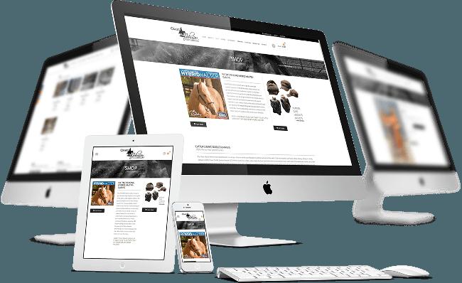 diseno-paginas-web-wordpress-premium