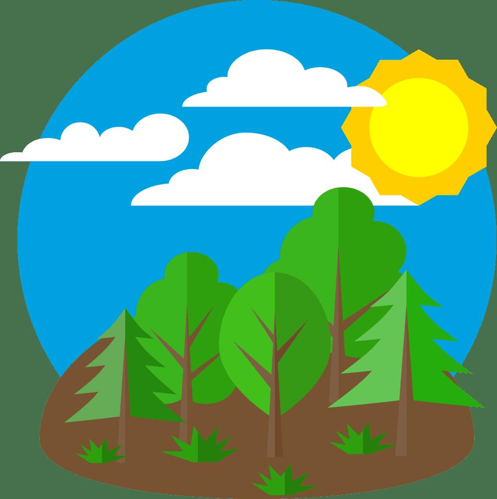 Consumidores-ecológicos